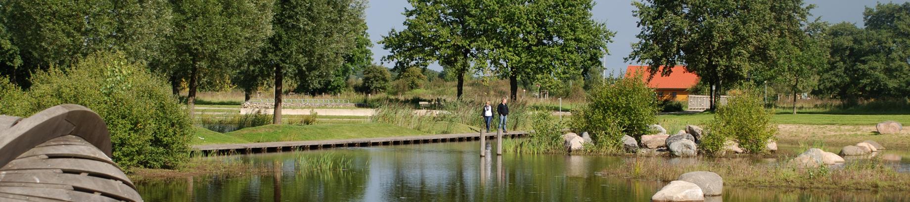 Blick über den kleinen Teich im Wietzepark in Richtung Steg. Auf dem Steg laufen zwei Personen.