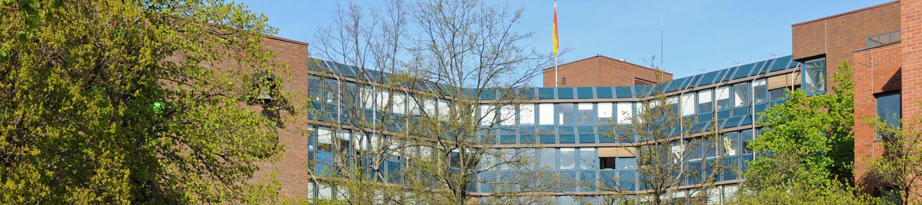 Rathaus-Header